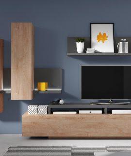 Tv-meubel Set BOTSWANA 2 Lades 2 Opbergvakken Antraciet/ribbec Eikenhout